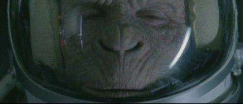 publicite-space-monkey